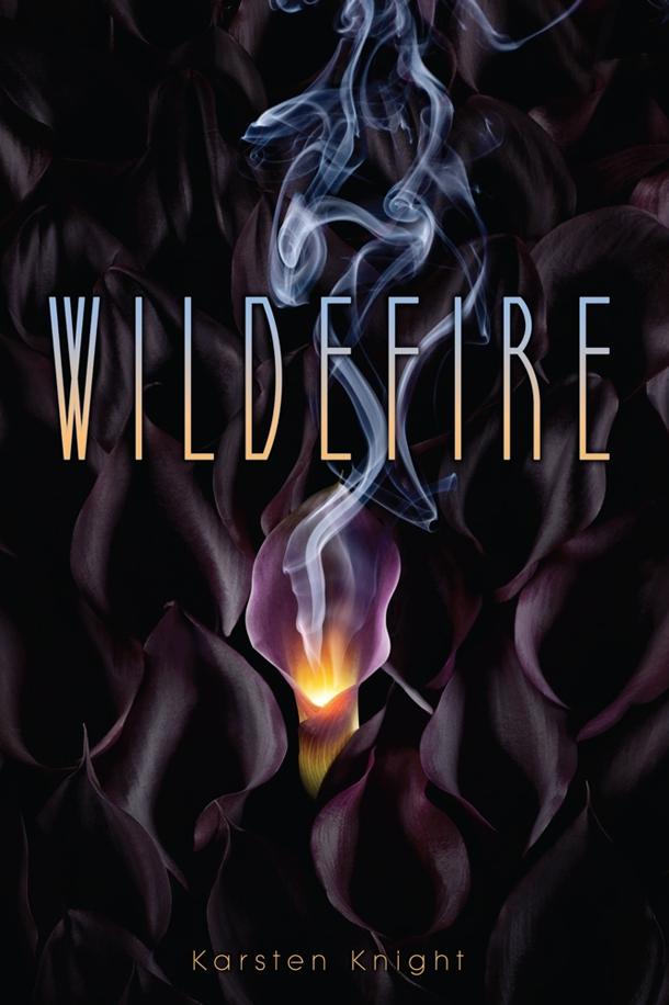 wildfire-by-karsten-knight