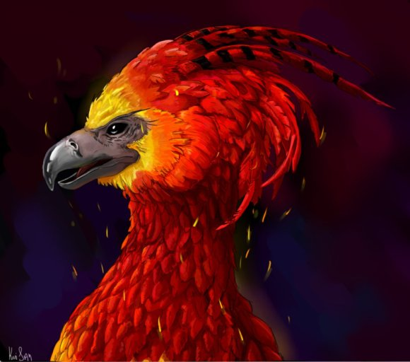 fawkes__harry_potter_by_viconbecon-d8q67tt