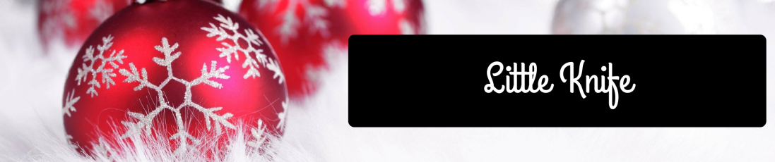 Christmas Blog Title (21)