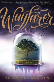 Wayfarer (1)