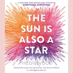 the-sun-is-also-a-star-6